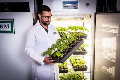 Weltweit arbeiten Forscher der BASF an neuen landwirtschaftlichen Lösungen. Im Jahr 2019, wird BASF hierfür rund 900 Millionen € für Forschung und Entwicklung ausgeben. / Worldwide, BASF researchers work on new agricultural solutions. In 2019, BASF w