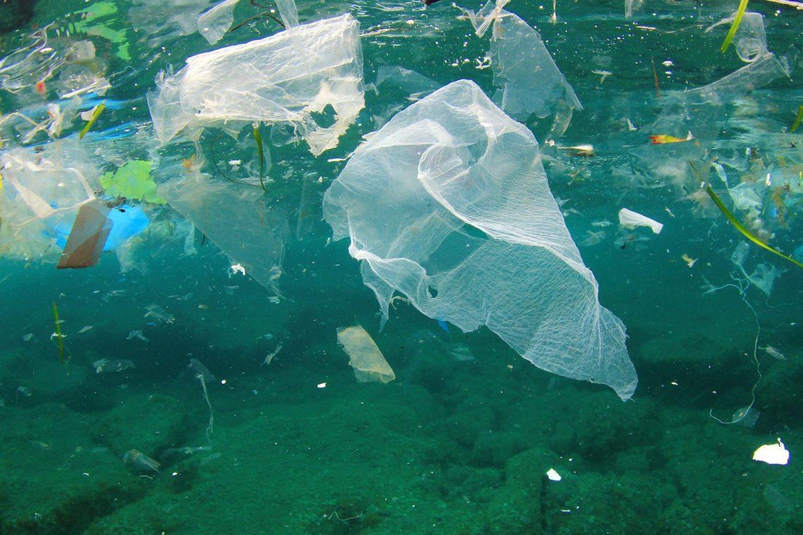 Contaminación con plástico 2