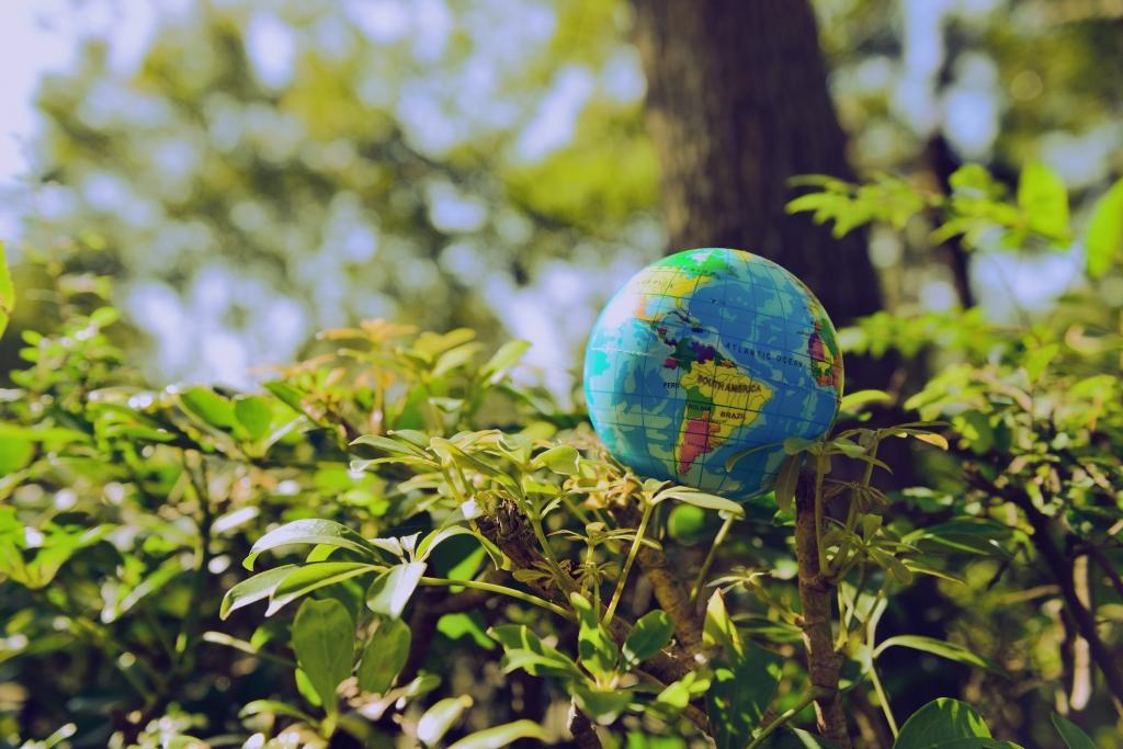 educación ambiental 2.jpg